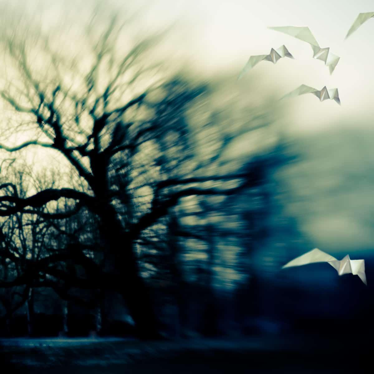 Are we Free II - Juliette Reniers