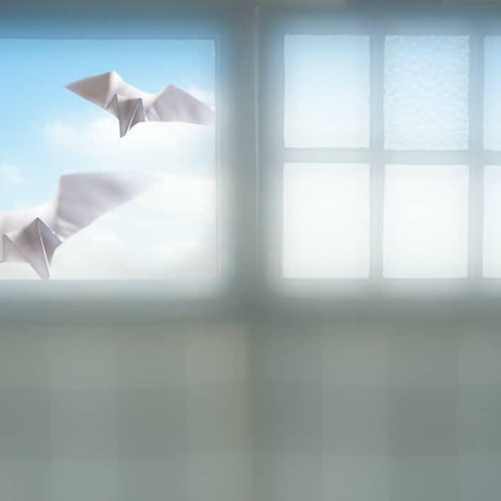 Dreams of Freedom - Juliette Reniers